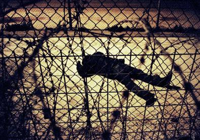 inmigrante ‡fricano herido en tierra de nadie entre Marruecos y Espa–a.