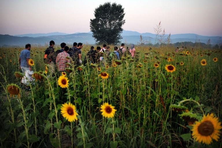 0010 una família de refugiados camina hacia Macedonia